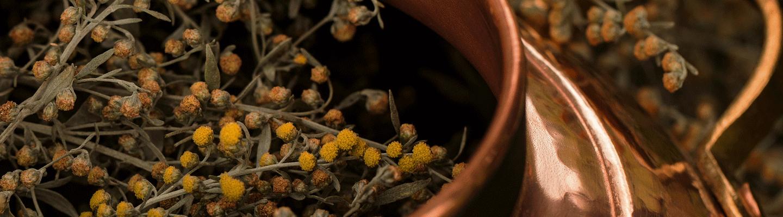 Les meilleurs Gins ≡ La sélection The Whisky Lodge